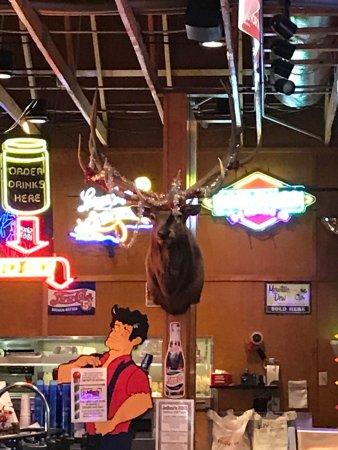 Ankeny, IA: Boat, deer, even a moose!