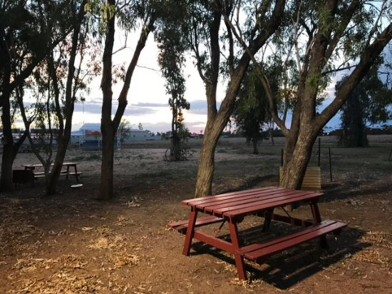 Longreach, Australia: Wander in the grounds of RM Williams cottage!