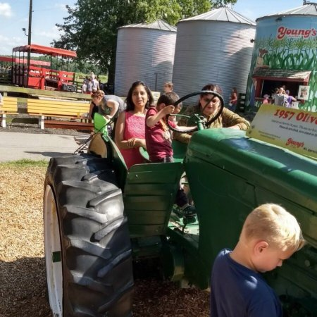 Yellow Springs, OH: Young's dairy is a perfect for a sunny day! A family outing to the farm with a hayride, cattle p