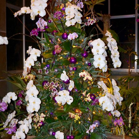 Belmont, Carolina del Norte: Daniel Stowe Botanical Garden