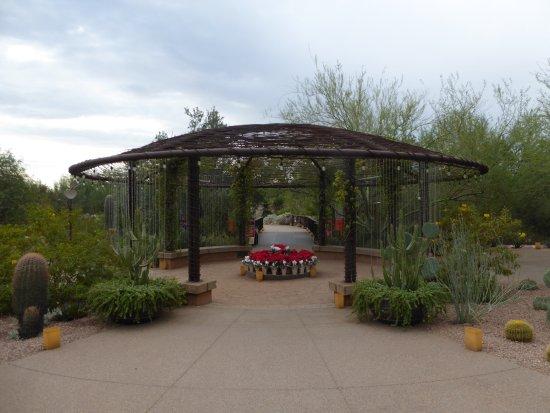Sign Picture Of Desert Botanical Garden Phoenix Tripadvisor