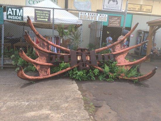 Waialua, HI: 正面・蟹のような機械はサトウキビを刈り取る物らしい