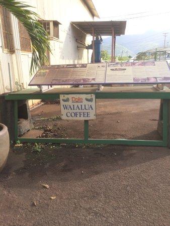 Waialua, HI: ワイアルアコーヒー