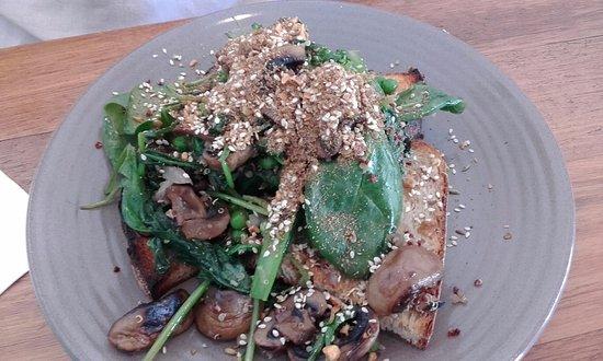 North Sydney, Australien: Mushrooms, Broccolini, Spinach and Dukkah on Sourdough toast
