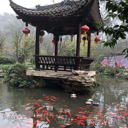 Leshan, China: photo6.jpg
