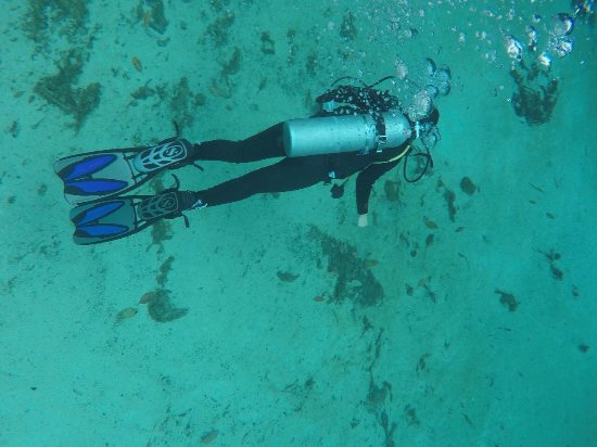Burbujas Bild Von Koox Diving Tulum Tripadvisor