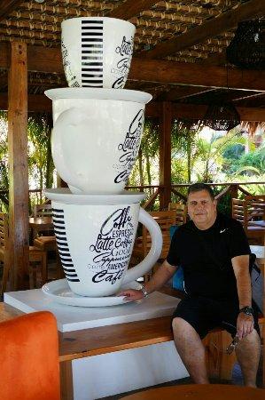 Punta Cana Princess All Suites Resort & Spa: IMG-20171207-WA0079_large.jpg
