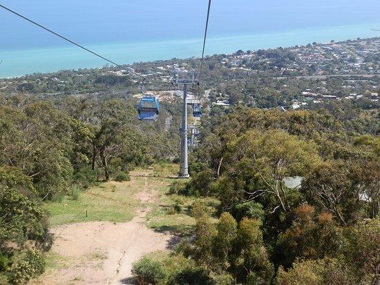 Eagle Gondola Arthurs Seat overlooking Dromana Beach