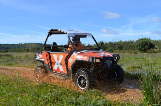 Small-Group Algarve RZR Buggy Tours