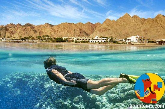 Boat Trip Snorkeling and Diving in Tiran Island Sharm el Sheikh