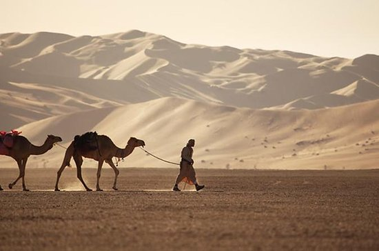 Empty Quarter & a Lost city from