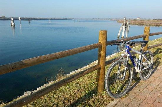 Excursion en vélo à Lido
