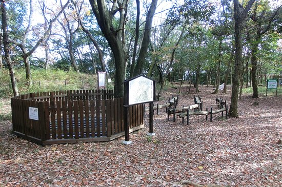 Yokkaichi, Japonya: 本丸跡にのこる井戸