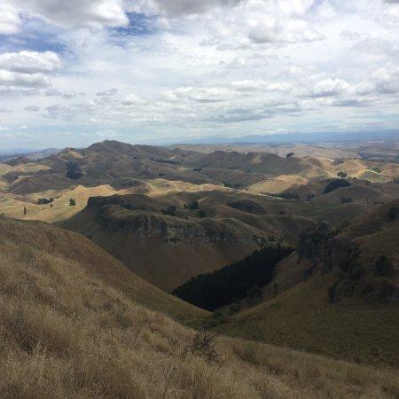Te Mata Peak: photo2.jpg