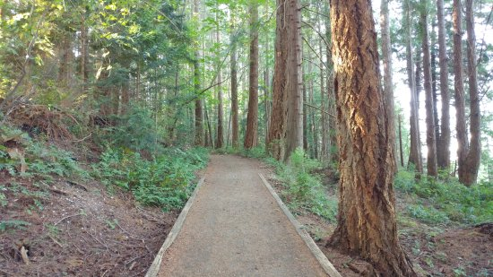 Denman Island, Kanada: Short trail at Fillongley Provincial Park