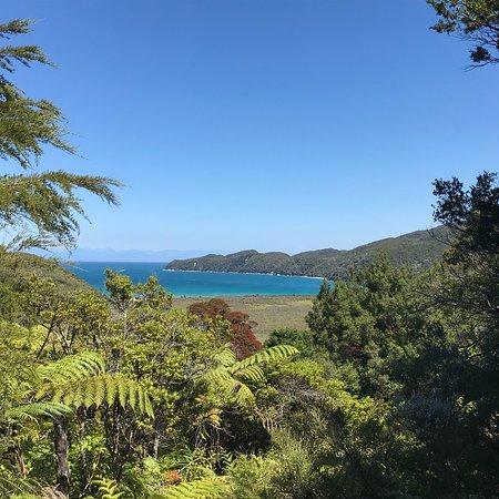 Abel Tasman National Park, Nueva Zelanda: photo3.jpg