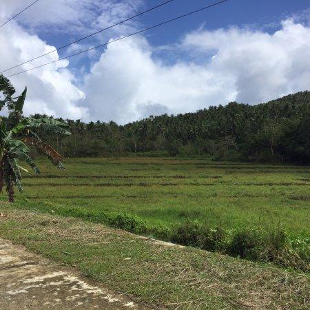 San Isidro, Philippines: photo2.jpg