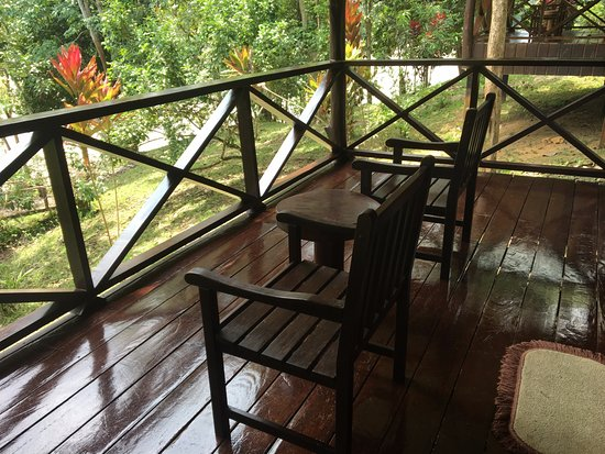 Proboscis Lodge Bukit Melapi Resmi