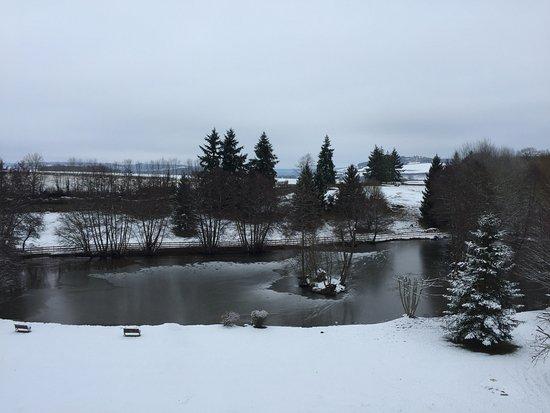 Sainte-Sabine, France: L'étang et le parc depuis la chambre