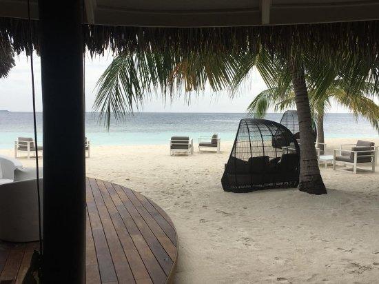 North Ari Atoll: beach with hammocks
