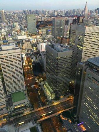 Tokyo Metropolitan Government Buildings: vista dalla torre sud