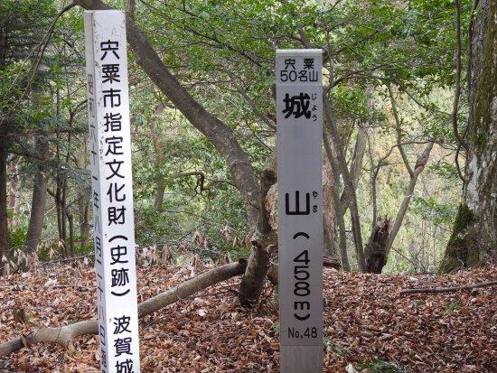 Shiso, Japan: 素敵な山城でした。秋から冬の訪問が良いかな。暑い時期はスズメバチや蛇がいそうです。