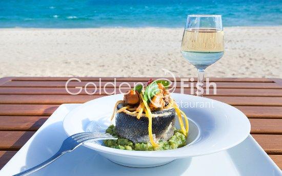 Golden fish foto golden fish hammamet tripadvisor for 7 eleven islip terrace