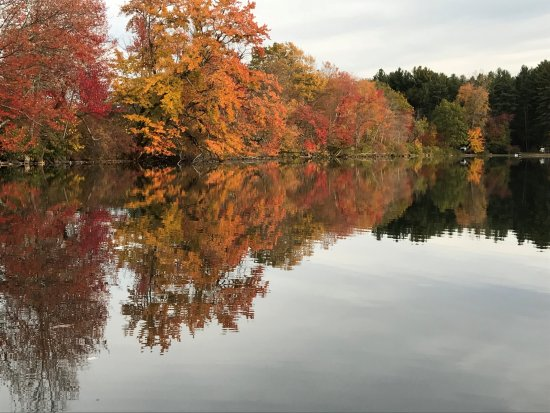 Great Barrington, MA: Reflecting on seasonal change on Prospect Lake