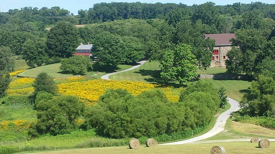 In the center of the 571-acre Stroud Preserve is an 18th-century farm complex. Photo: Jarrod Shu