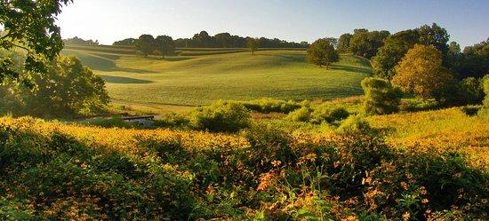 Stroud Preserve: Photo: Simone Collins Landscape Architects