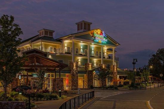 margaritaville island hotel 199 2 9 2 updated 2019 prices rh tripadvisor com