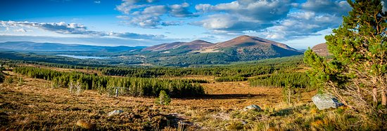 Aviemore and the Cairngorms, UK: Great view - that's Loch Morlich in the distance