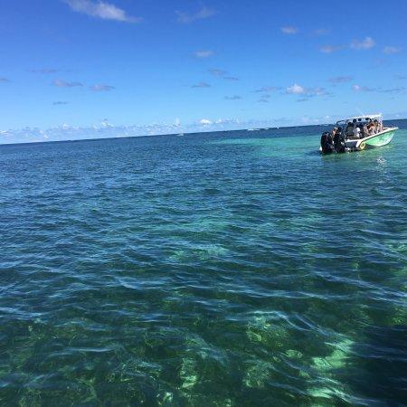 Le Francois, Martinique: photo0.jpg