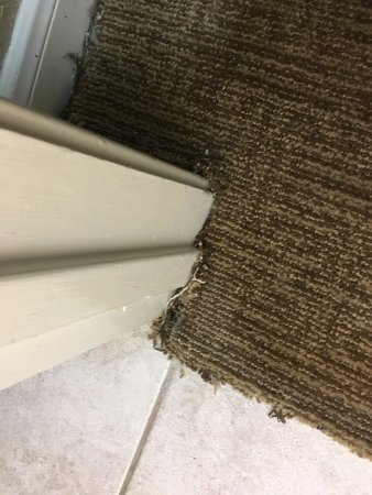Jersey Village, TX: Carpet Not Tacked Down