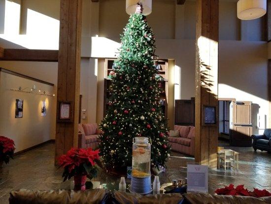 Christmas Tree Purgatory >> Purgatory Lodge At Purgatory Resort Updated 2019 Prices Hotel