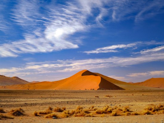 Kids Loved This Review Of Big Daddy Dune Sossusvlei