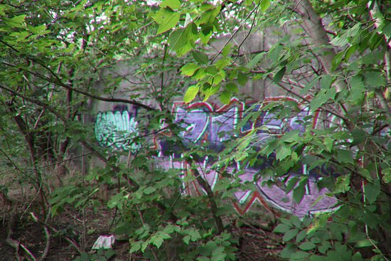 St. Catharines, Canada: Another wall with graffiti