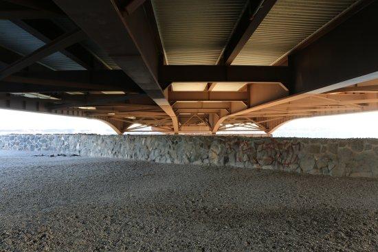 Snake River Canyon Trail: Trail passes under Perrine Bridge