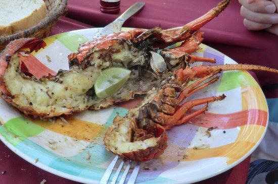 Laguna Beach Hotel & Spa: CIMG6840_large.jpg