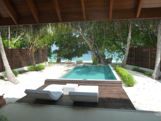 Beach Villa With Pool No 317 Assigned On Last Day For