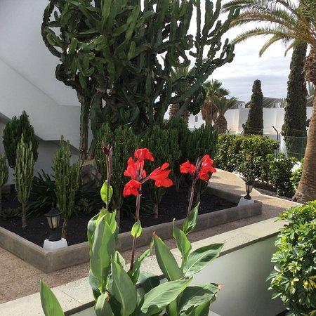 Hotel Floresta: photo0.jpg