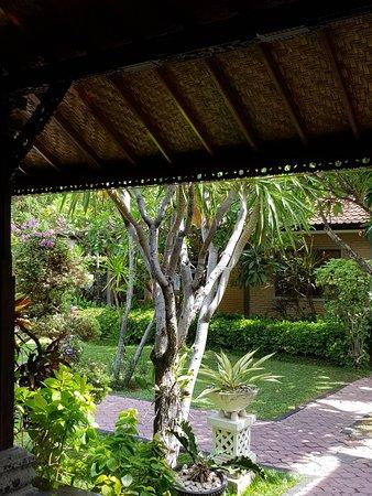 Satriya Cottages: Green oasis
