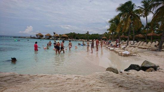Renaissance Aruba Resort Amp Casino Updated 2017 Prices Reviews Amp Photos Tripadvisor