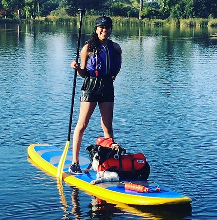 Lodi, CA: Training the puppies to paddle board