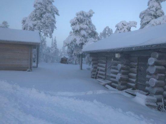 Luosto, Finland: IMG-4554_large.jpg