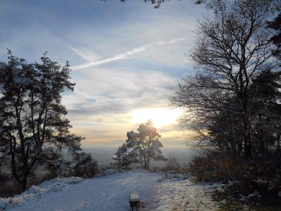 Dorking, UK: Leith Hill