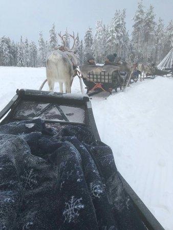 Luosto, Finland: IMG-4642_large.jpg