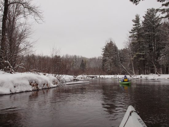 Manistee County, MI : Manistee River - From the Manistee River Trail
