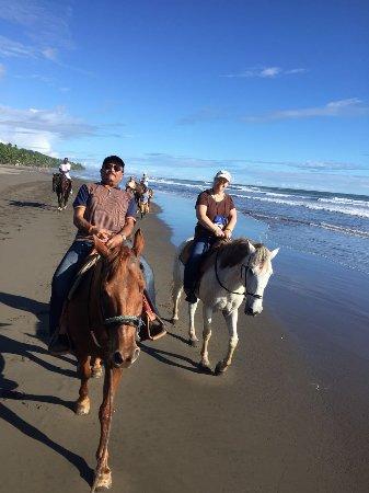 Esterillos Este, Kosta Rika: Quality horses, quality experience! Best horseback of the area guaranteed!