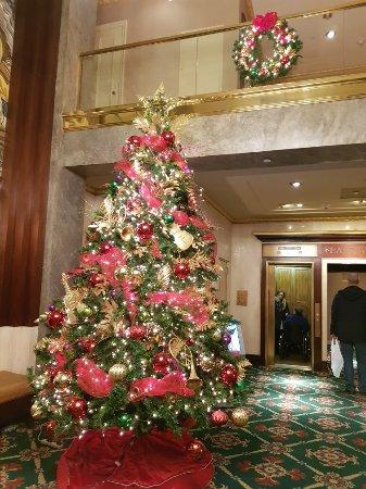 Wellington Hotel: 20171123_181832_large.jpg
